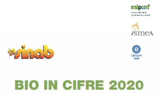 """La crescita del bio in Italia: rapporto ISMEA """"Bio in cifre 2020"""""""